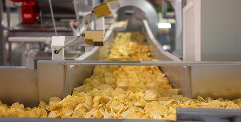 potato crisp processing